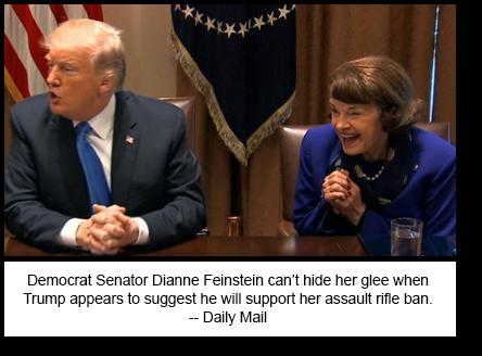 Trump Feinstein RStyle